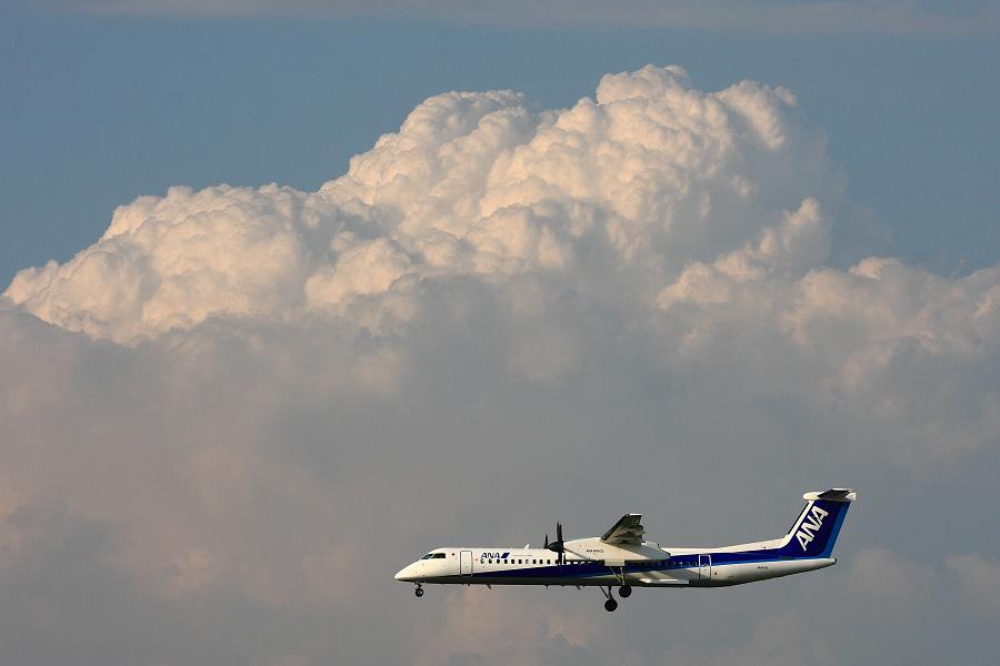 ANA WINGS DHC-8-402Q / ANA1628 (JA847A)@伊丹スカイパーク