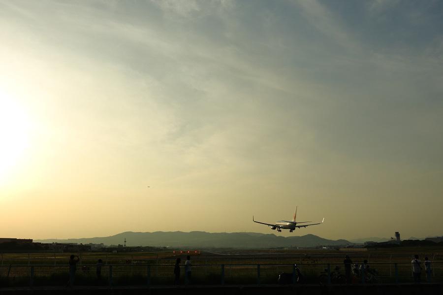 JEX B737-846 / JAL3005 (JA350J)@RWY32Lエンド・千里川土手