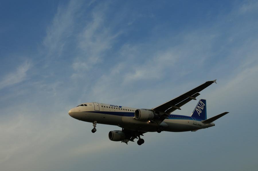 ANA A320-211 / ANA778 (JA8395)@RWY32Lエンド・千里川土手