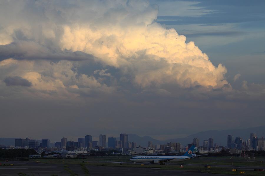 巨大な入道雲with ANA B767-381 / ANA2177 (JA602A)@下河原緑地展望デッキ