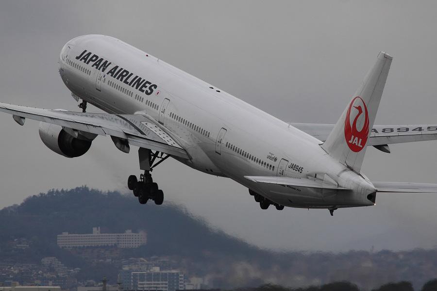 JAL B777-346 / JAL2081 (JA8945)@伊丹スカイパーク