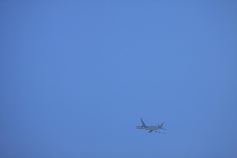 JAL B777-346 / JAL2087 (JA8942)@エアフロントオアシス下河原沿道