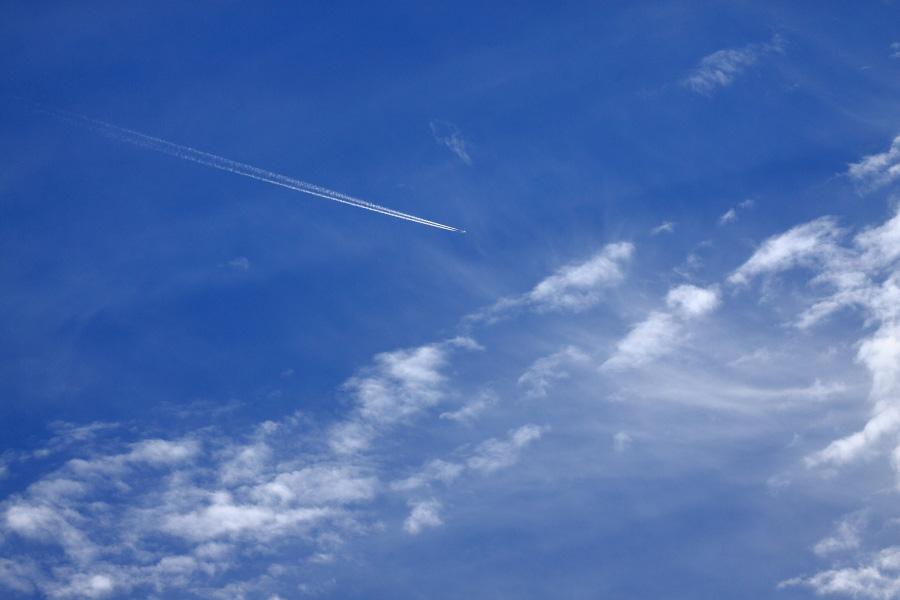 南西の空のコントレイル景@下河原緑地展望デッキ
