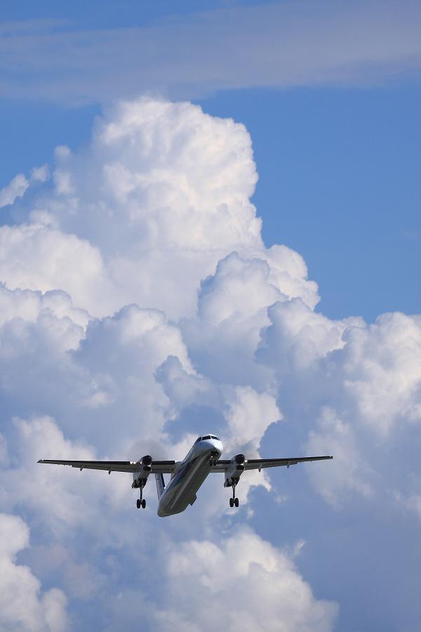 ANA WINGS DHC-8-402Q / ANA1697 (JA852A)@エアフロントオアシス下河原沿道