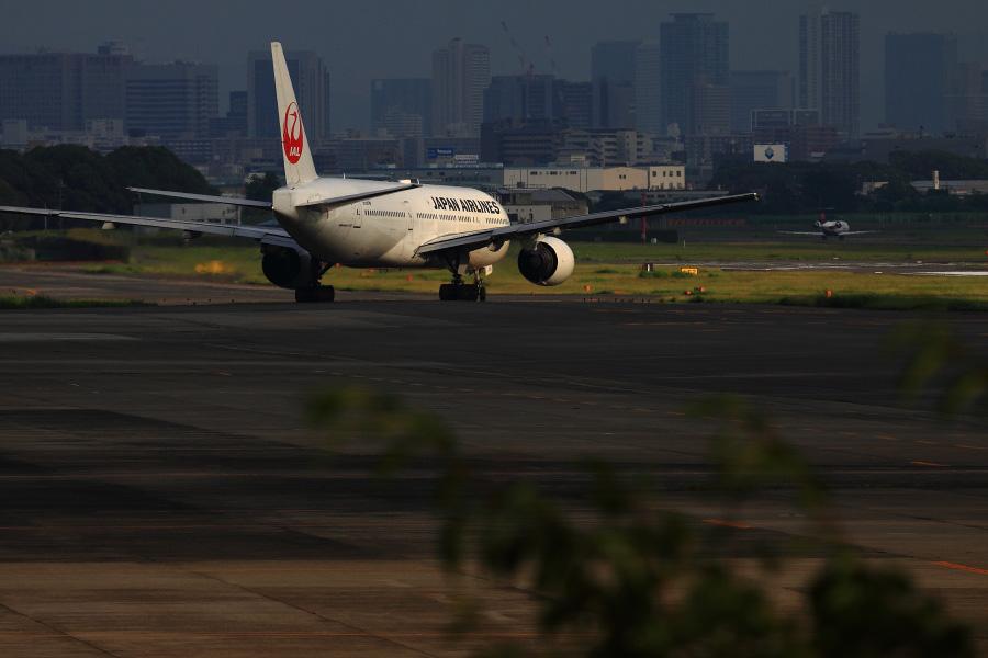 JAL B777-289 / JAL128 (JA8978)@下河原緑地展望デッキ