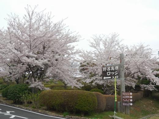 2014.04.20 野呂山 030