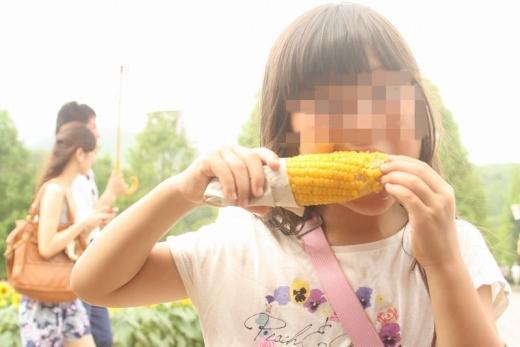2014.08.17 世羅ひまわり 033