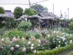 庭園(2)