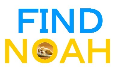 FIND NOA大