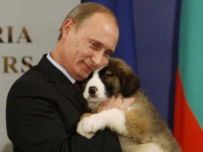 Vladimir-Putin-650x487.jpg