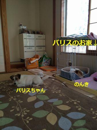 2014070101.jpg