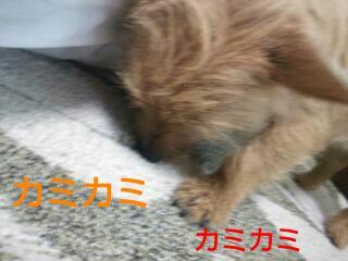 20140213_170734.jpg