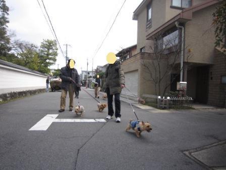 京都もい・まー家IMG_7656 - コピー
