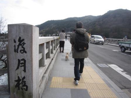 京都ミィ・まー家IMG_7715 - コピー