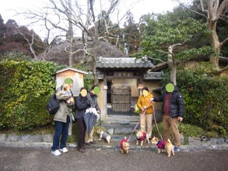 京都ミィ・まー家IMG_7817 - コピー