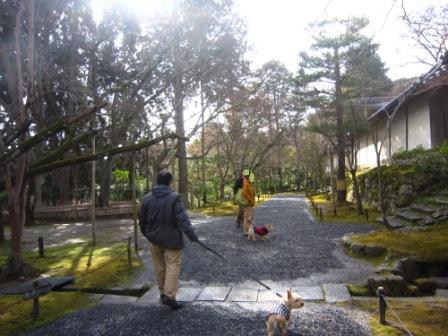 京都ミィ・まー家IMG_7821 - コピー (2)