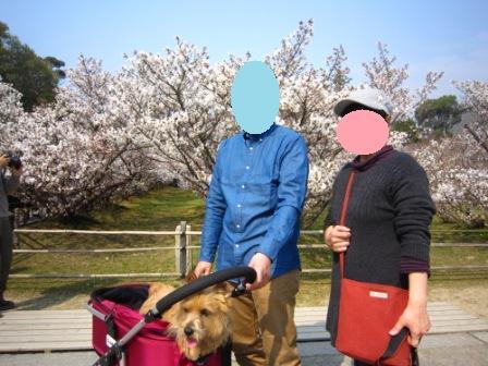 チャッピー仁和寺IMG_8191 - コピー