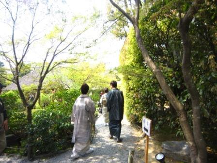 桜退蔵院IMG_8241 - コピー