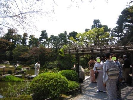 桜退蔵院IMG_8240 - コピー