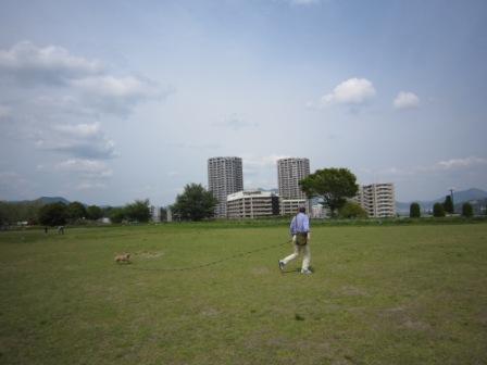 広域公園IMG_8466 - コピー