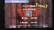 MH4 イャンガルルガ 最小サイズ 1256、04