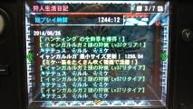 MH4 ギルドカード 狩人生活日記 1244時間12分 0626
