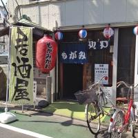 mogamigawa1