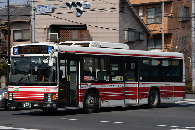 06-C9165-2s.png