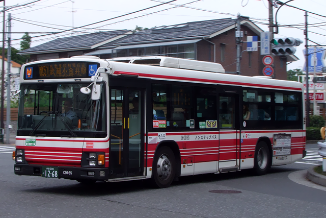 06-C9165-3s.png