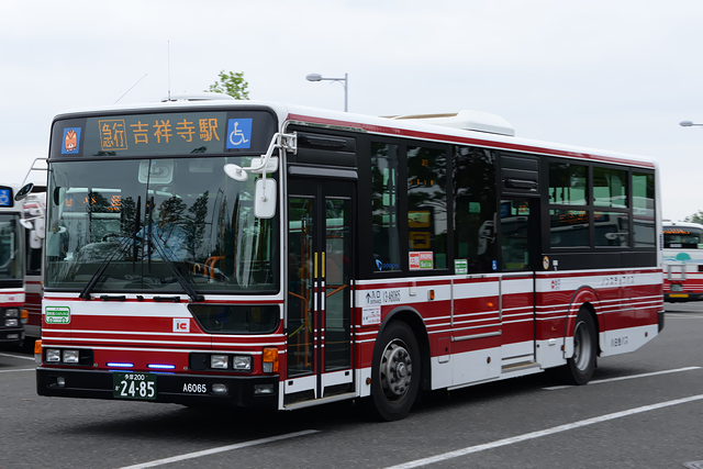 13-A6065-1s.png