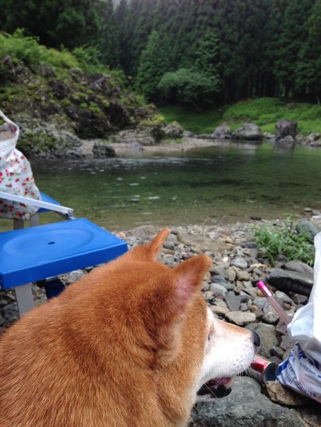 2014.8.5川!②