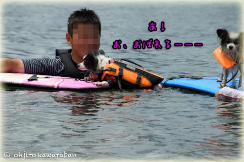 7*7-DSC_0226