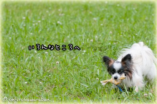 11*12-DSC_2001