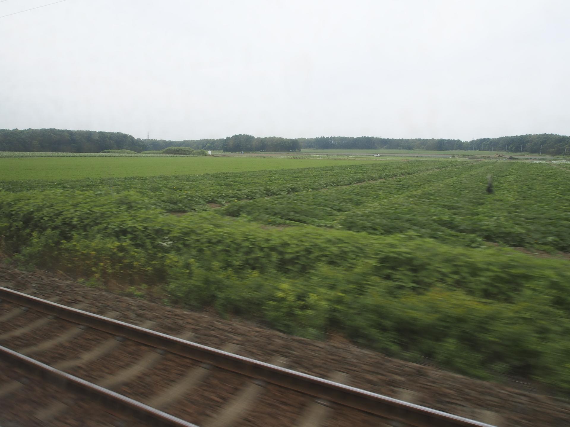 千歳に向かう列車からの車窓風景