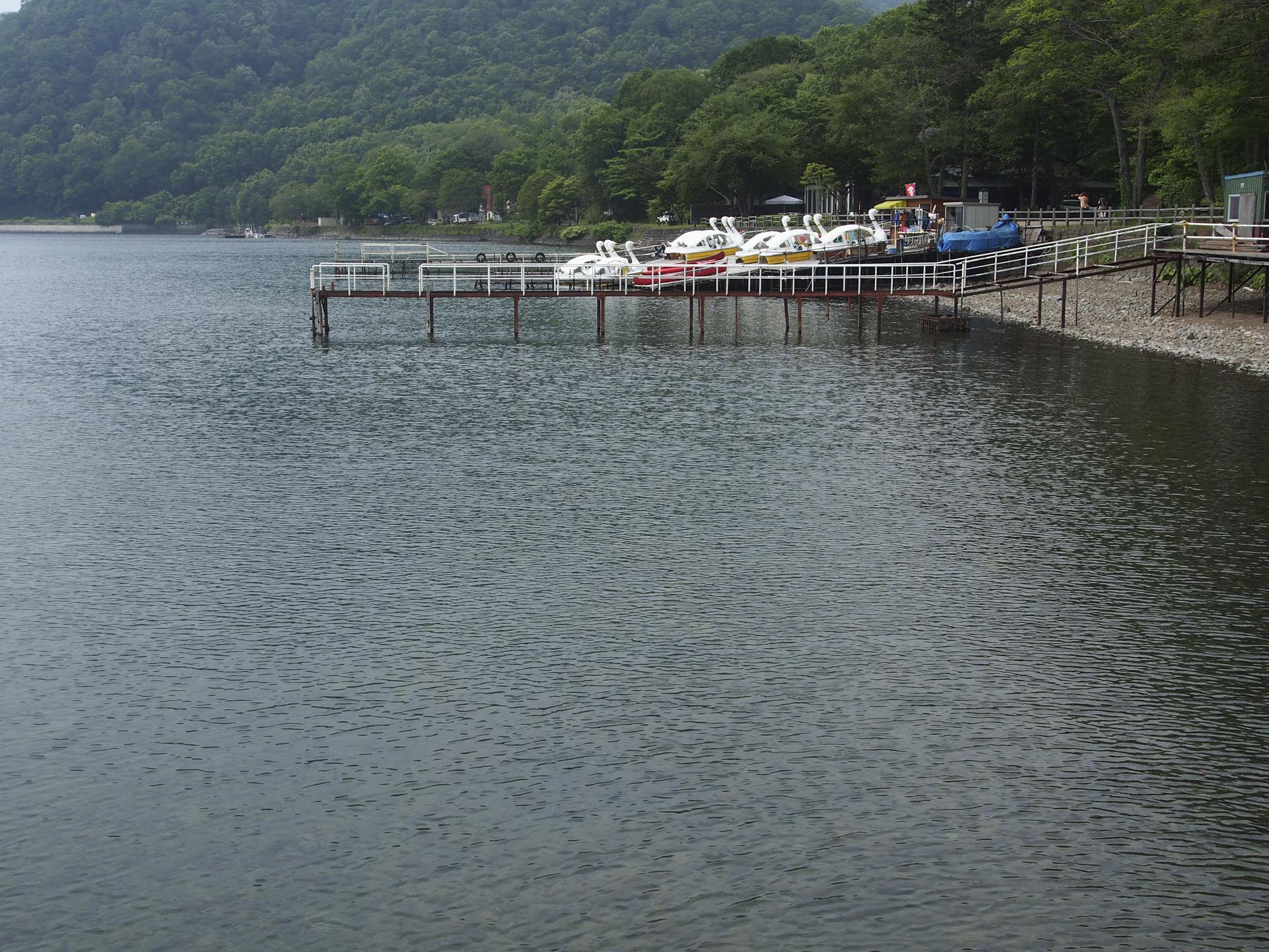 支笏湖の湖岸風景