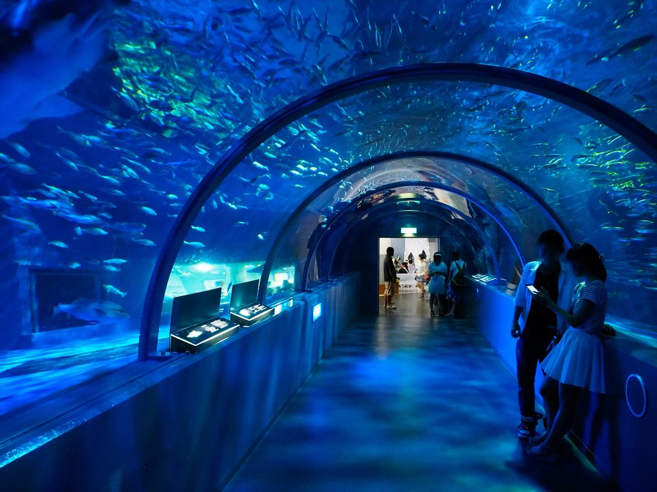 アクアトンネル2