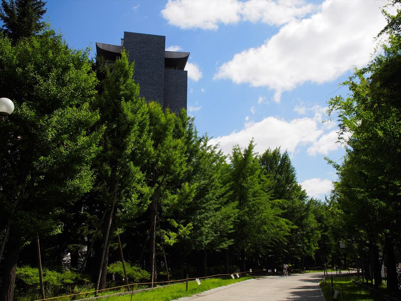 中島公園の緑豊かな景色