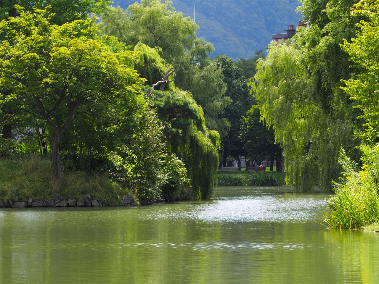 菖蒲池の景色2