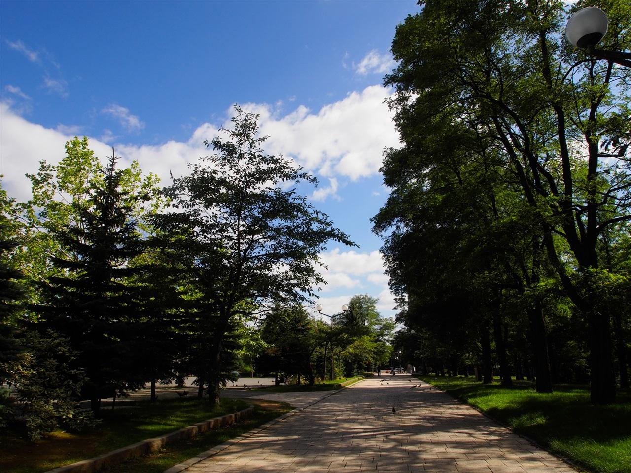 中島公園の散歩道