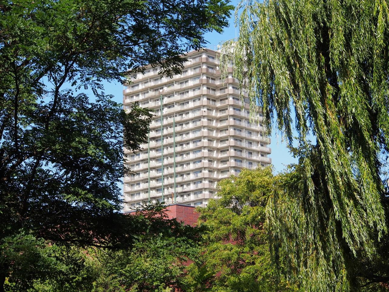 緑葉の向こうに見えるマンション