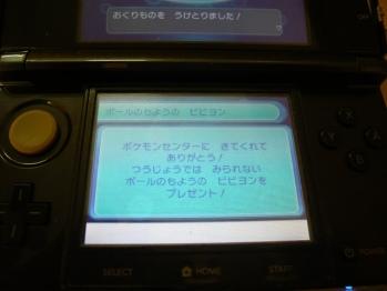 P1140457.jpg