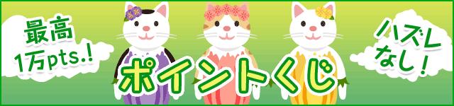 スマホ版ECナビ ポイントくじ バナー