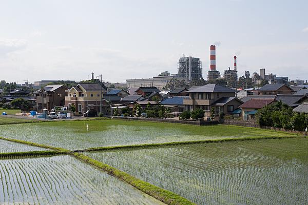 庄内川-8
