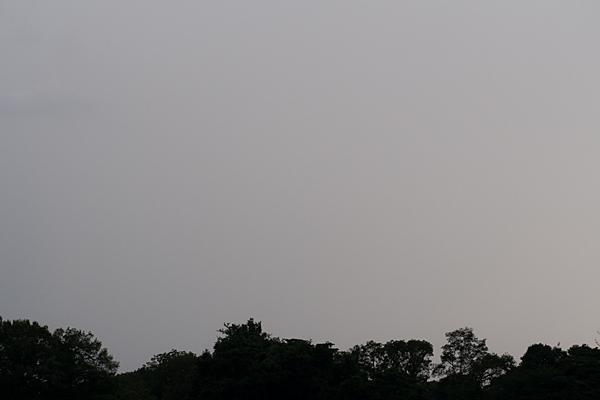 小幡緑地-8