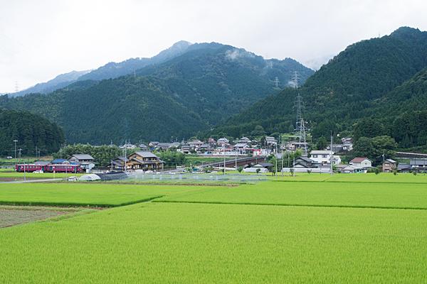 長良川鉄道5-1