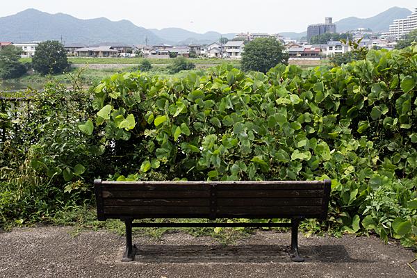 犬山1-9