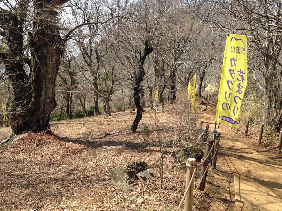 IMG_1232筑波山