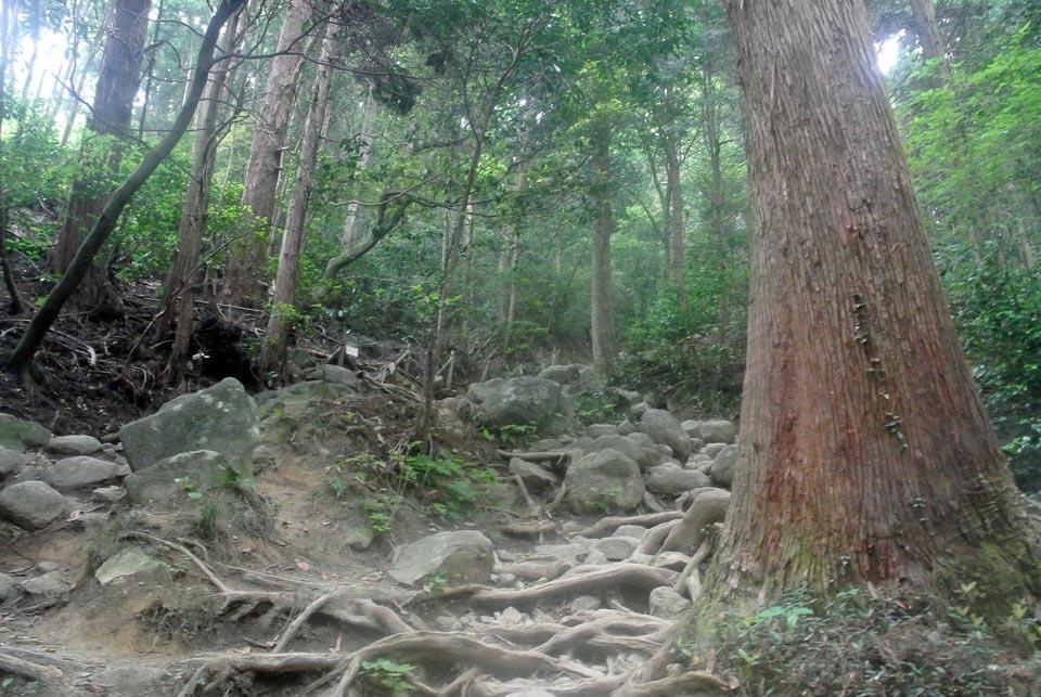 DSC_2255筑波山