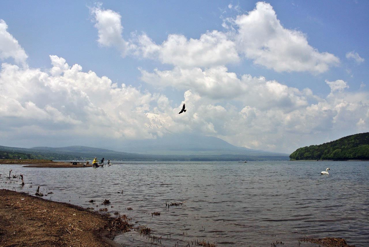 DSC_2131山中湖