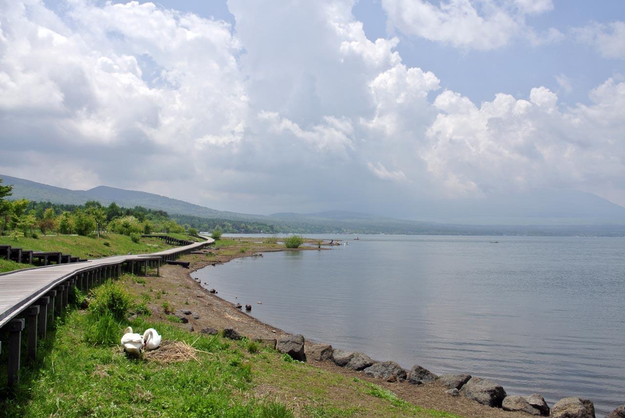 DSC_2146山中湖